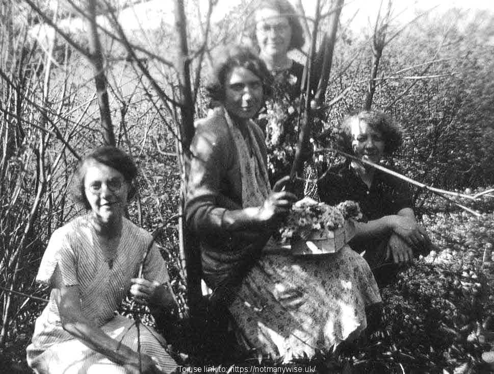 1930's Mary, Rene, Edna and Nellie the Haydon sisters.