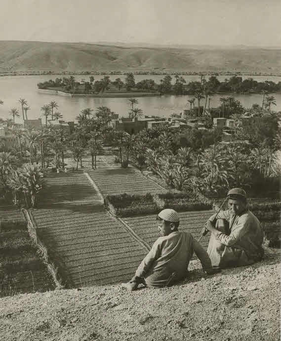 The traditional Garden of Eden, looking east across the valley of the Euphrates, 250 miles north of Babylon.
