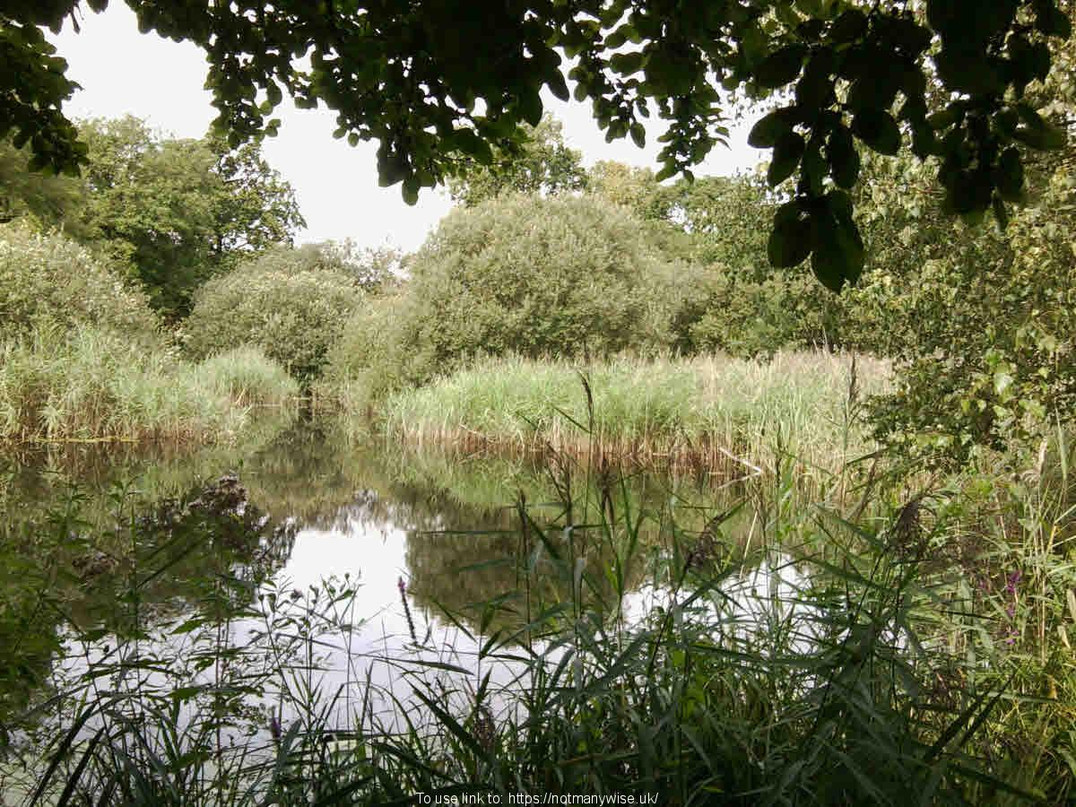 Wicken Fen looking from a Hide. Nature speaks about a Creator God.