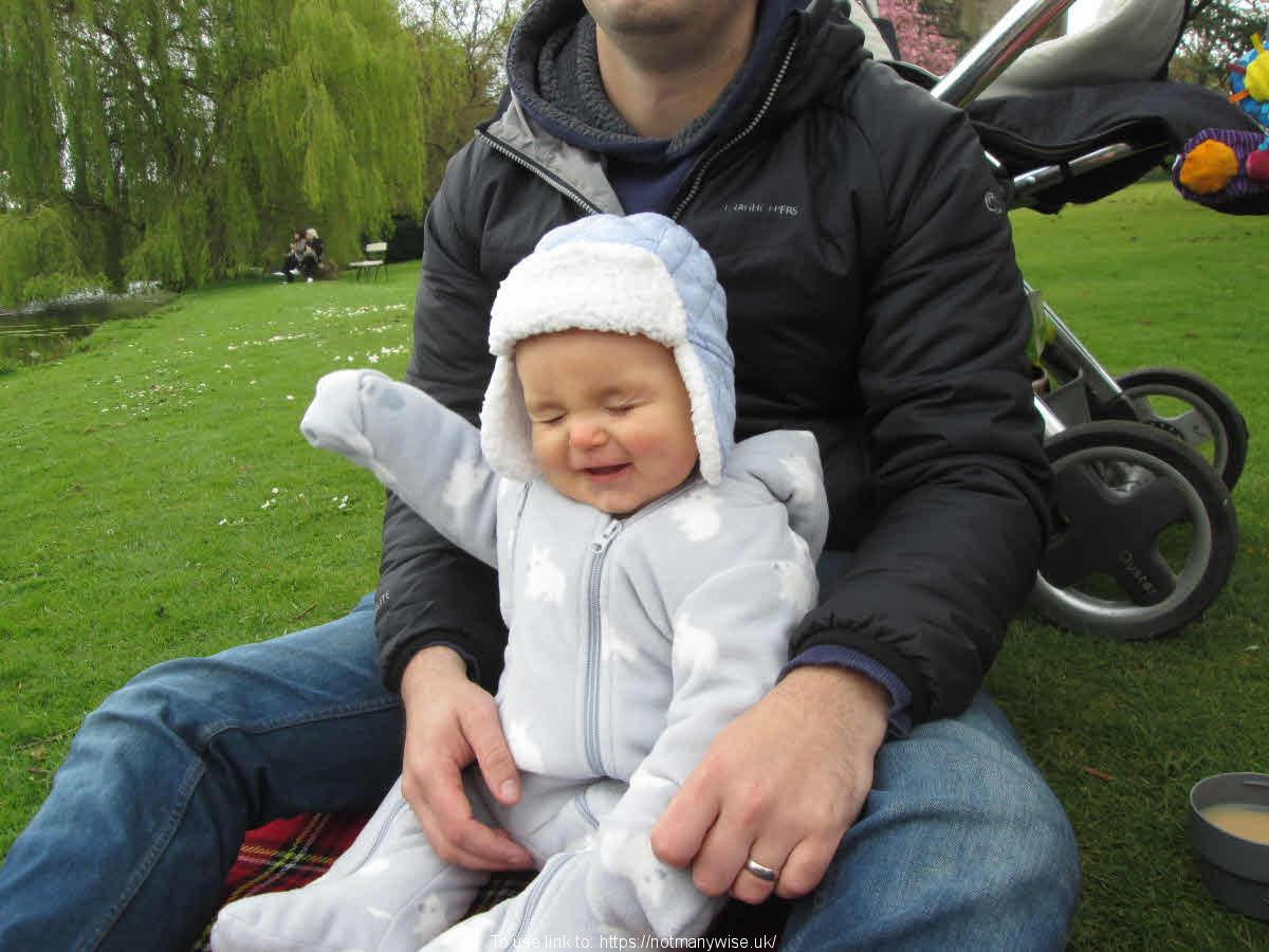 Baby with father on a picnic.