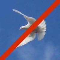 A dove with a red line across it.