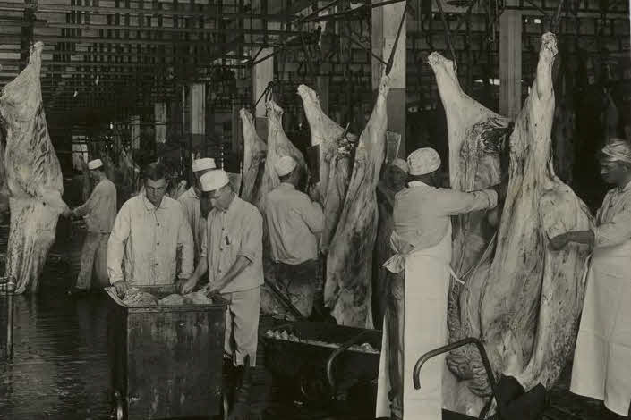 Government Inspection of Meat hanging from hooks.