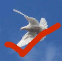 A white dove with a red tick to say yes to being filled with the Spirit.